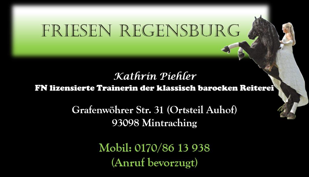 Friesen Regensburg